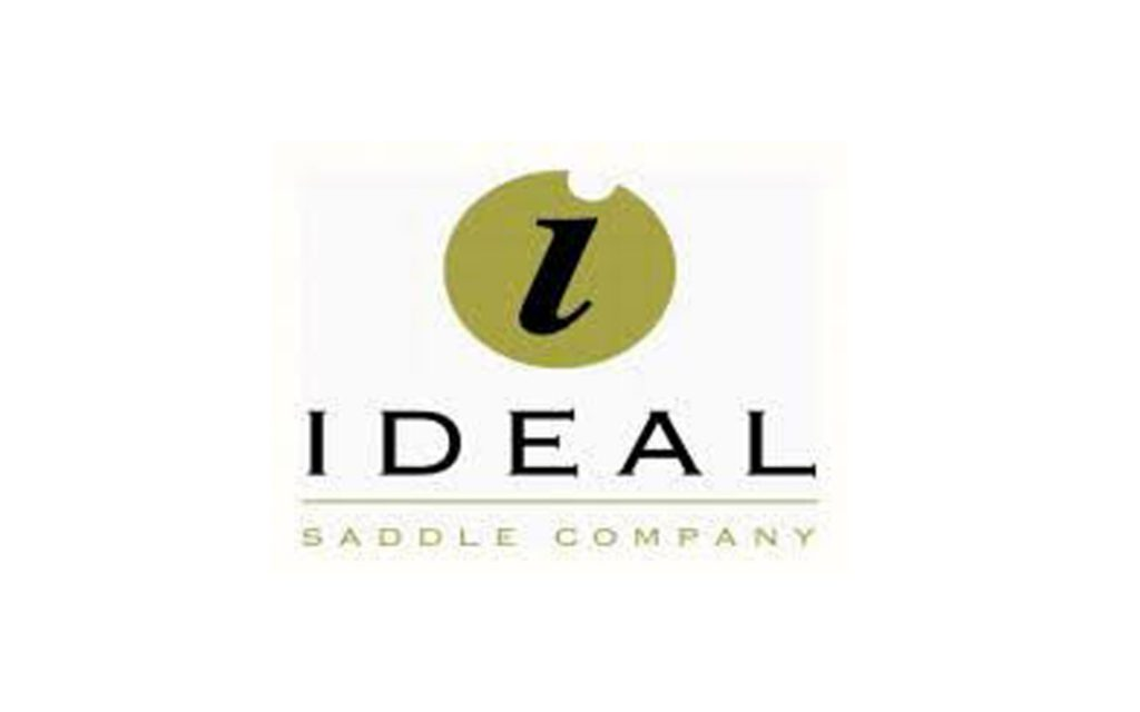 Ideal Saddles