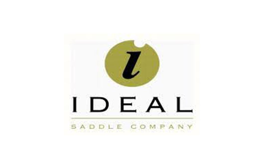 Ideal Saddles